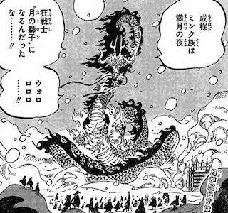 ワンピースネタバレ988話最新話確定速報ジャック軍団VS赤鞘&ミンク族!
